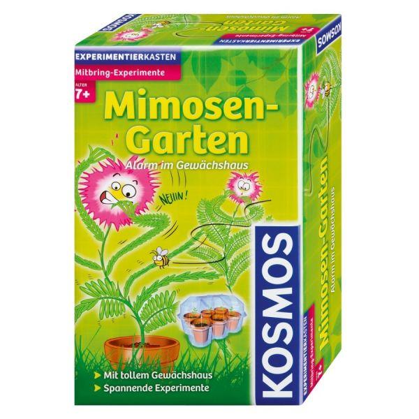 Mitbringexperiment Mimosen-Garten